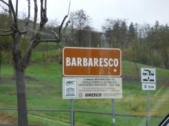 BarbarescoPiedmont