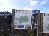 PyreneesCatalans