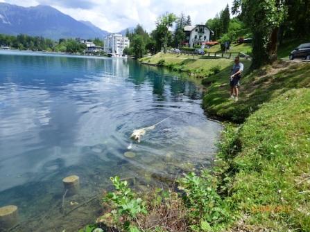 FinallyGetASwim!LakeBled